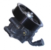 Power Steering Pump TX2 (New)